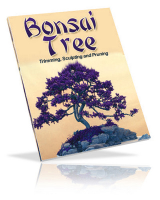 Product picture Bonsui Tree Gardening